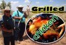 Grilled Chicken Roast Recipe in feild Texas